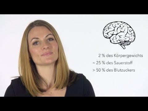 Wie unser Gehirn lernt - Mit Proviant und Ausrüstung ans (Lern-)Ziel (видео)