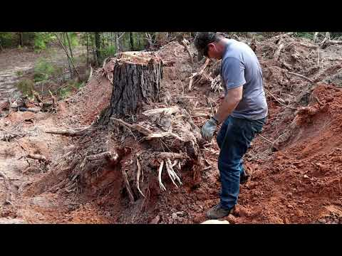 Tree Stump Removal With A Backhoe MAN TIME!
