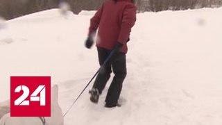 Жители алтайской деревни Жаворонки оказались в снежном плену