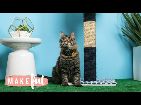 Chic DIY Cat Scratching Post | Pet Projects