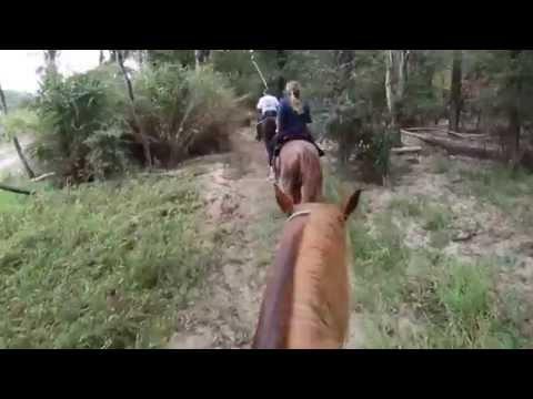 Horseback Riding Trinity River Goat Island Preserve Dallas County Texas