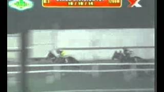 RACE 1 JUNGLE JINGLE 10/10/2014