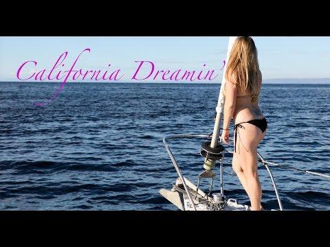 64. Lazy Gecko Sailing & Adventures - California Dreamin_Best videos: Sailing
