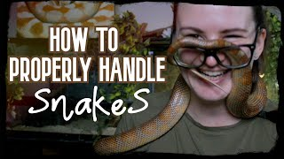 HOW TO PROPERLY HANDLE SNAKES by Jossers Jungle