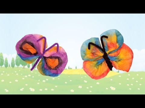 Papillon en filtre � caf�