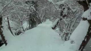 Dorking United Kingdom  city photo : Dorking (UK) in Snow 2 Trailer