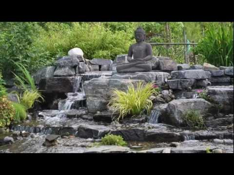 Pond hunter water garden koi pond how to videos waterfalls for Convert koi pond to pool