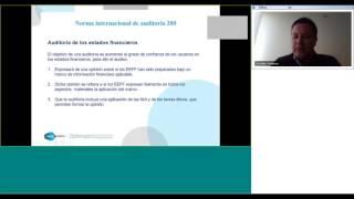 Principios básicos de la NIA 200