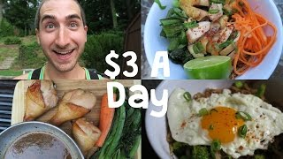 How To Eat Incredibly Well on $3 a Day by Brothers Green Eats