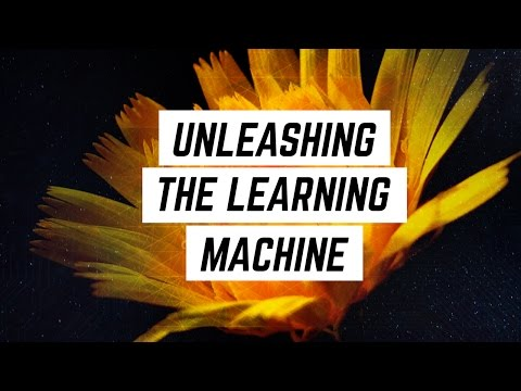 The Foundation of Teaching Growth Mindset: Unleashing the Learning Machine