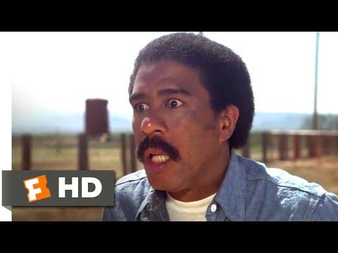 Stir Crazy (1980) - The Secret Word Scene (8/10) | Movieclips