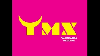 Qué es TAUROMAQUIA MEXICANA?