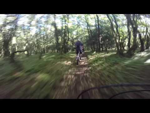 Exmoor Uplift 1