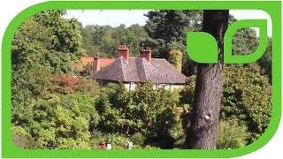 #829 Wisley Garten in England - immer einen Besuch wert