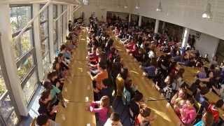 cup song collège Bégon Blois - YouTube