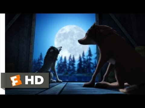 Alpha and Omega (11/12) Movie CLIP - Howl at the Moon (2010) HD