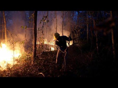 Βολιβία: Ιθαγενείς καταστρέφουν τον Αμαζόνιο
