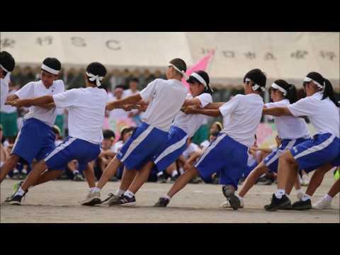 平成28年度第70回安行中学校体育祭