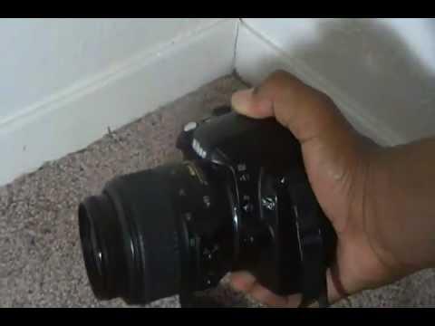 Nikon D40 SLR Camera Review!
