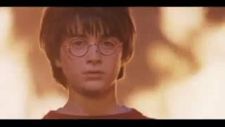 Harry Potter || the boy who lived