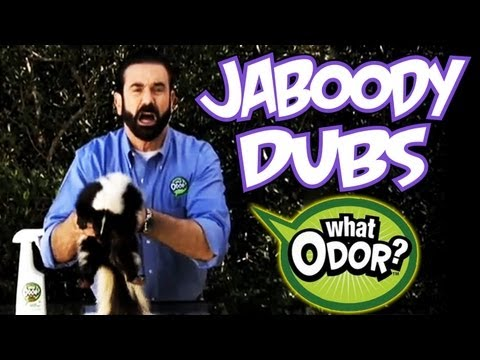 What Odor Dub Video