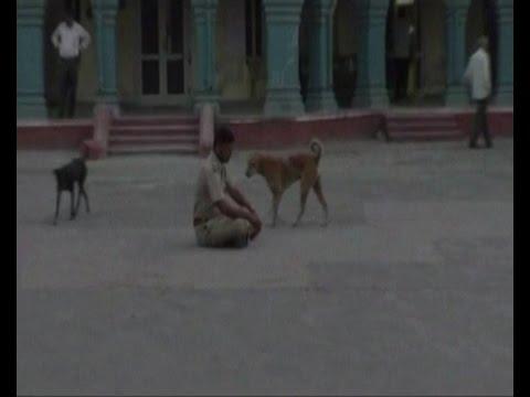 Video Drunk policeman creates ruckus inside Police station in Sirohi Rajasthan download in MP3, 3GP, MP4, WEBM, AVI, FLV January 2017