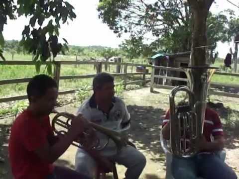 Tocata no Sitio Ribeirão Pires- Rorainopolis-RR