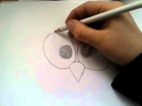 Vogel Zeichnen
