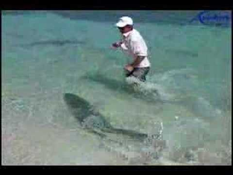 Fishing Big Monster Tarpon (sabalo) in the Caribbean Sea, Cuba Destinations