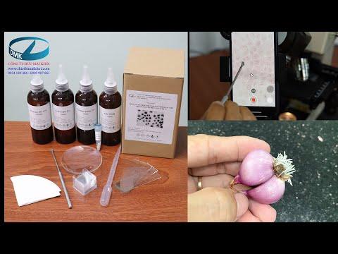 Hướng dẫn sử dụng bộ hóa chất dụng cụ nhuộm nhiễm sắc thể làm tiêu bản nguyên phân giảm phân