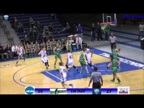 CNU Women's Basketball vs York Jan 3, 2015