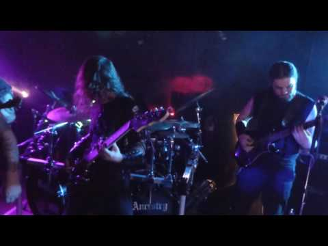 Wolven Ancestry - (Live in Sudbury)