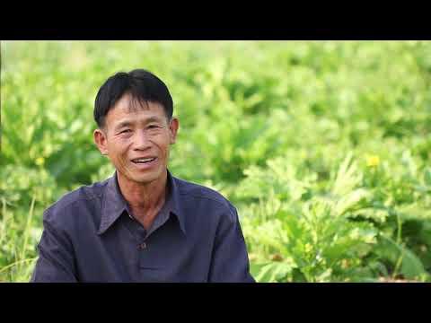 นายอุ่นเรือน ไทยใจอุ่น เกษตรกรทำสวนผสมที่เชียงใหม่ ผู้เดินตามรอยพระราชดำริ