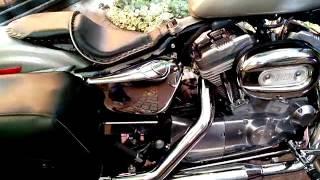 10. Harley Davidson Sportster 883 Low -VENDO-