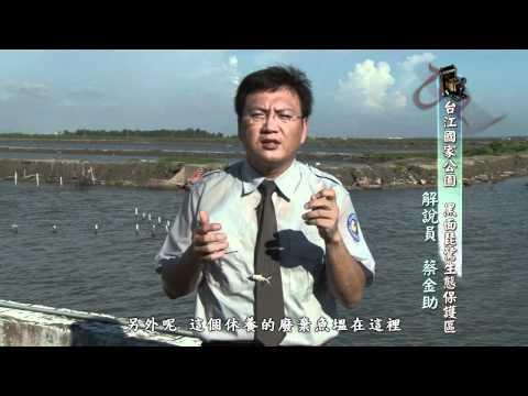 [行動解說員]台江國家公園- 黑面琵鷺生態保護區
