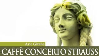 Caffé Concerto Strauss - HORA SPICCATO - Dinicu