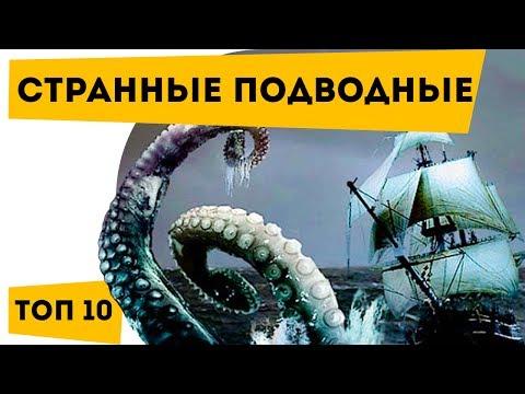 ➤➤ ТОП 10 Самые СТРАННЫЕ подводные животные | Наука для школьников | Семен Ученый