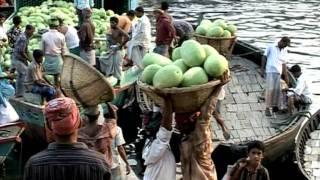 Video DMA 2008: Bangladesh se adapta al cambio climático