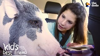 Girl's BFFs Are Two Pigs — Who Act Just Like Dogs   The Dodo Kid's Best Friend by The Dodo