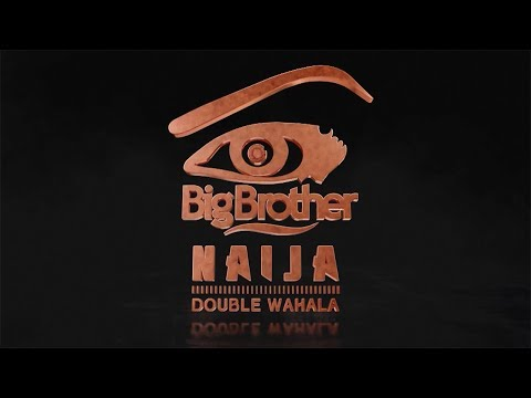 Big Brother Double Wahala - Housemates