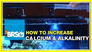 FAQ #38 I add Calcium and Alkalinity Solutions but the levels are actually dropping?