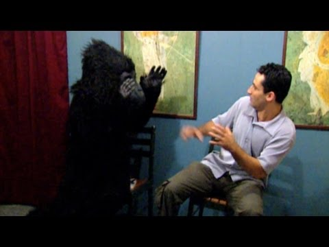Best of Just For Laughs Gags - Waiting Room Pranks - Youtube