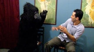 Best Of Just For Laughs Gags - Waiting Room Pranks