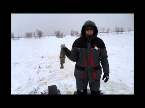 Видео отчёт 19.01.2013г