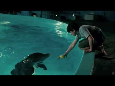 "Dolphin Tale [HD Music Video] - ""Safe"" by Westlife"