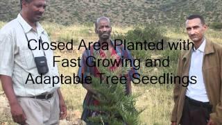 Climate Change-Ethiopia.wmv