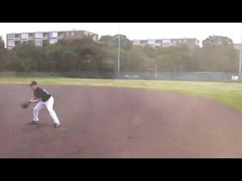 Car hits softball field