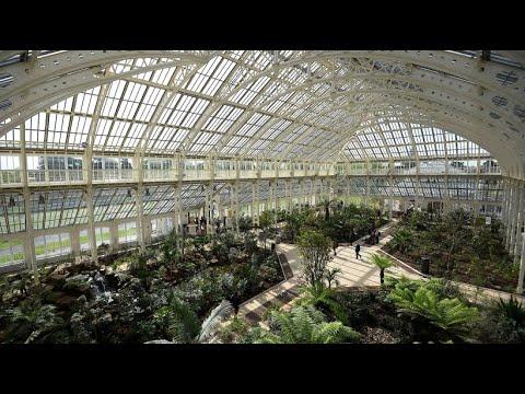 """Gewächshaus in den Londoner """"Kew Gardens"""": Wiedereröffnung nach Restaurierung"""