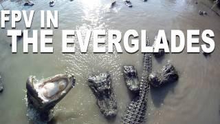 Video Beautiful HD FPV - The Everglades - RCExplorer.se MP3, 3GP, MP4, WEBM, AVI, FLV Januari 2019
