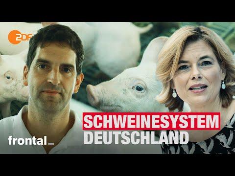 Massentierhaltung: Muss Schweinehaltung noch so sein? I frontal